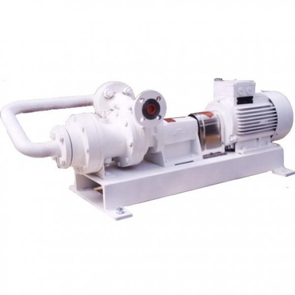 NACHI IPH-55B-50-64-11 IPH Double Gear Pump #2 image