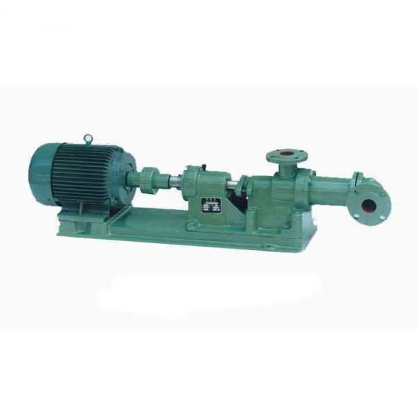 NACHI IPH-55B-50-50-11 IPH Double Gear Pump #1 image